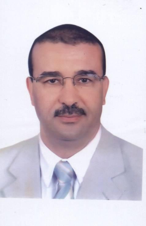 الدكتور حسن حلمى
