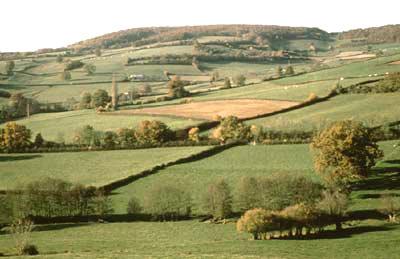 La biodiversité agricole