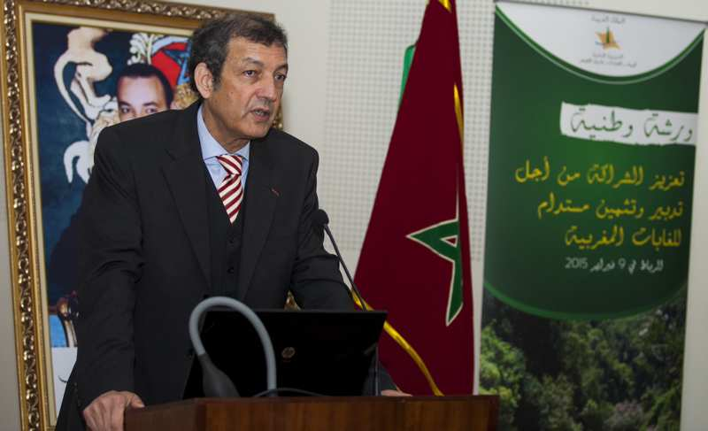 DR ABDELADIM HAFI