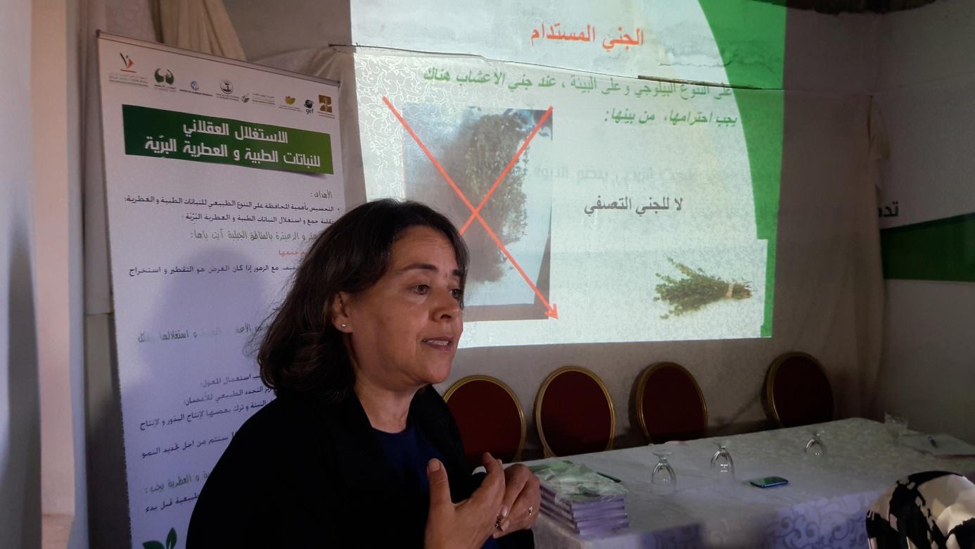 Dr. Bouzoubaâ ZakiaLa