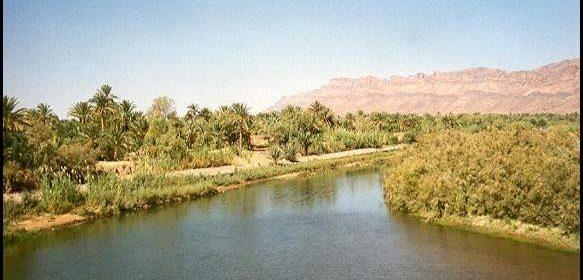 Morocco oasis