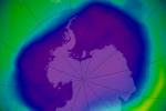 the-ozone